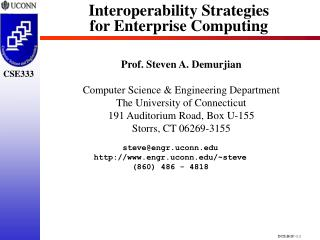 Interoperability Strategies  for Enterprise Computing