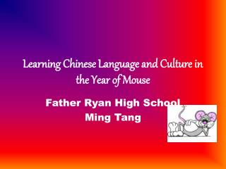 Learning Chinese Language and Culture in the Year of Mouse