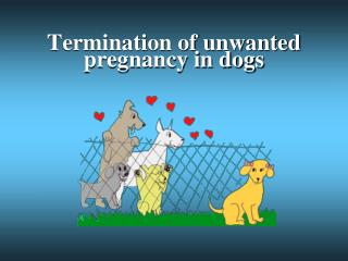 Termination of unwanted pregnancy in dogs