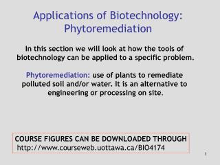 Applications of Biotechnology: Phytoremediation