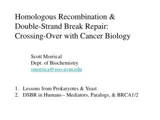 Homologous Recombination &  Double-Strand Break Repair: Crossing-Over with Cancer Biology