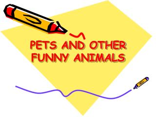 PETS AND OTHER FUNNY ANIMALS