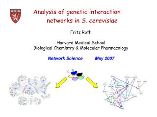 Analysis of genetic interaction  networks in  S. cerevisiae