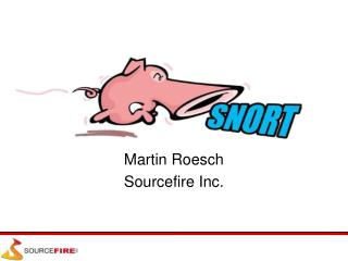 Martin Roesch Sourcefire Inc.