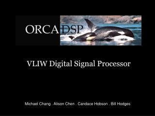 VLIW Digital Signal Processor