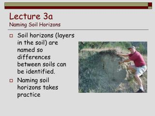 Lecture 3a Naming Soil Horizons