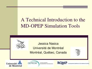 A Technical Introduction to the MD-OPEP Simulation Tools