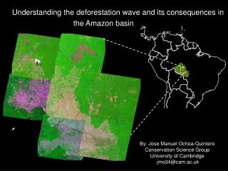 "Understanding the deforestation wave and its consequences in the Amazon basin  forest "","