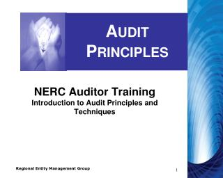 Audit Principles