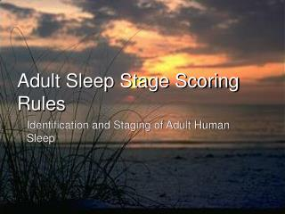 Adult Sleep Stage Scoring Rules