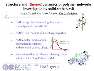 NMR as a probe of network/gel structure: chain dynamics and statistics