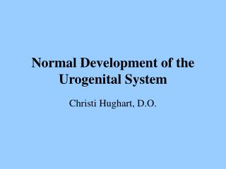 Normal Development of the Urogenital System