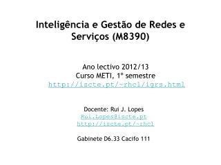 Inteligência e Gestão de Redes e Serviços (M8390)