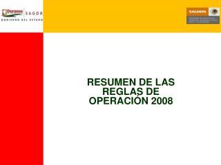 RESUMEN DE LAS  REGLAS DE OPERACIÓN 2008