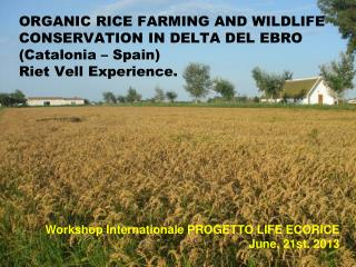 Workshop Internationale PROGETTO LIFE ECORICE June, 21st. 2013