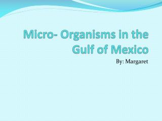 Micro- Organisms in the Gulf of Mexico
