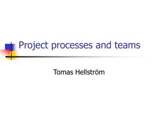 Project processes and teams