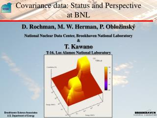 Covariance data: Status and Perspective at BNL