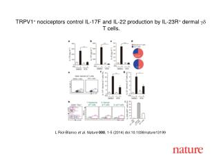 L Riol-Blanco et al. Nature  000 , 1-5 (2014)  doi:10.1038/nature13199
