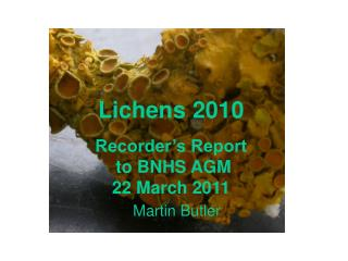 Lichens 2010 Recorder's Report  to BNHS AGM  22 March 2011