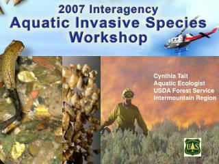 Cynthia Tait Aquatic Ecologist USDA Forest Service Intermountain Region