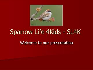 Sparrow Life 4Kids - SL4K