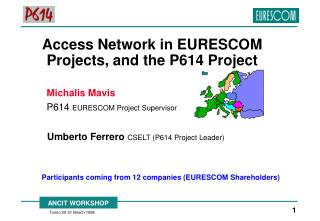 Access Network in EURESCOM Projects, and the P614 Project