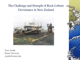 The Challenge and Strength of Rock Lobster Governance in New Zealand
