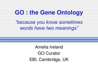 "GO : the Gene Ontology ""because you know sometimes words have two meanings"""