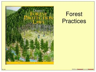 Forest Practices