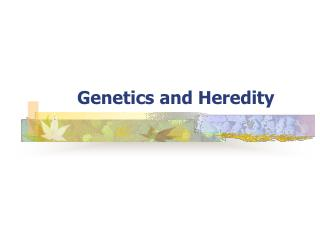 Genetics and Heredity