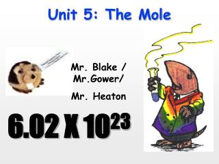 Unit 5: The Mole
