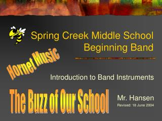Spring Creek Middle School Beginning Band