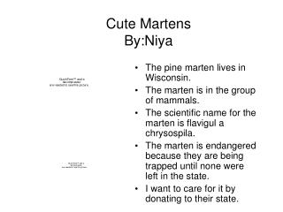 Cute Martens By:Niya