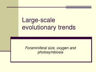 Large-scale evolutionary trends