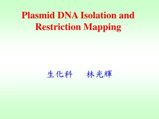 Plasmid DNA Isolation and Restriction Mapping