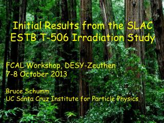Initial Results from the SLAC ESTB T-506 Irradiation Study FCAL Workshop, DESY-Zeuthen
