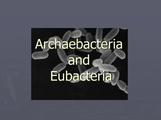 Archaebacteria  and  Eubacteria