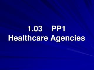 1.03    PP1 Healthcare Agencies