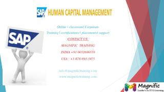 sap hcm online training in Bangalore