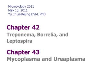 Chapter 42 Treponema, Borrelia, and Leptospira