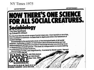 NY Times 1975