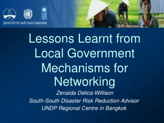 Lessons Learnt from Local Government Mechanisms for Networking