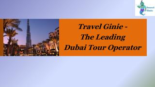 Travel Ginie The Leading Tour Operator in Dubai