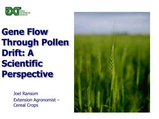 Gene Flow Through Pollen Drift: A Scientific Perspective