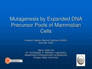 Mutagenesis by Expanded DNA Precursor Pools of Mammalian Cells