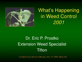 What's Happening in Weed Control   2001