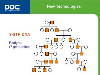 Y-STR DNA Pedigree (7 generations)