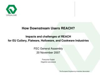 How Downstream Users REACH?  Impacts and challenges of REACH
