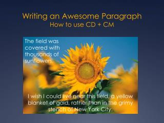 Writing an Awesome Paragraph How to use CD + CM
